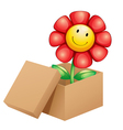 A flower inside the box vector image vector image