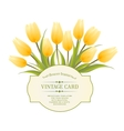 Spring flowers bouquet for vintage card vector image