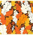 Hello fall pattern vector image