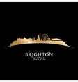 Brighton England city skyline silhouette vector image vector image