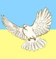 Sketch peace dove for Ukrainian war vector image
