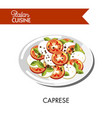 caprese italian cuisine mozzarella cheese and vector image