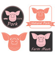 Pork vector image