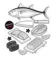salmon fish meat japan food doodle elements vector image
