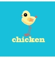 small chicken vector image