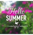 Summer card with flowers background and text vector image