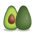 fresh avocado vegetable isolated icon vector image