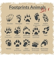 Footprints Animals - set vector image vector image