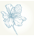 drawing of a blue flower on a white background vector image