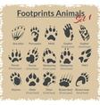 Footprints Animals - set vector image