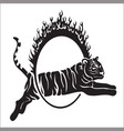 tribal tiger jump outline vector image
