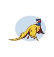 Cartoon Pheasant bird flying vector image