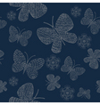 flowers butterflies pattern vector image