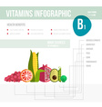 Vitamine infographic vector image
