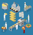 factory cheese production line elements and staff vector image