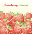 strawberry season vector image vector image