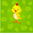 Easter Chick background vector image