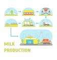 milk production process vector image