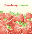 strawberry season vector image