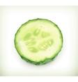 Slice of cucumber vector image vector image