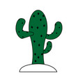cactus ilustration vector image
