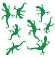 silhouettes of salamander vector image