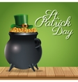 st patrick day pot golden coins hat wooden green vector image