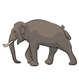 Asian elephant vector image vector image