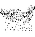 black maples falling background vector image