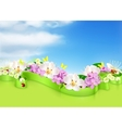 Spring flowers and clouds background vector image vector image
