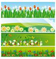 collection of banners with flowers vector image vector image