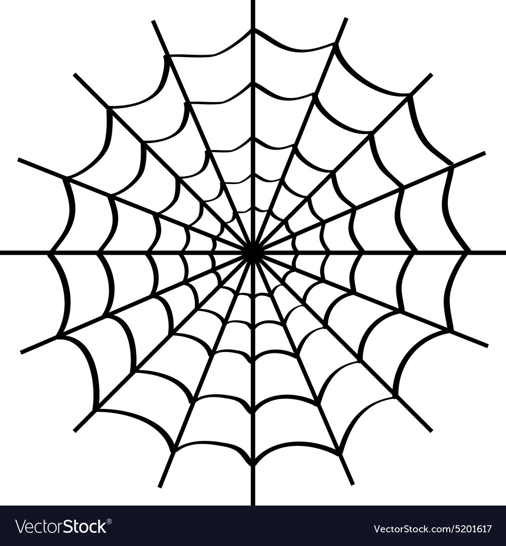 Spider web on white vector
