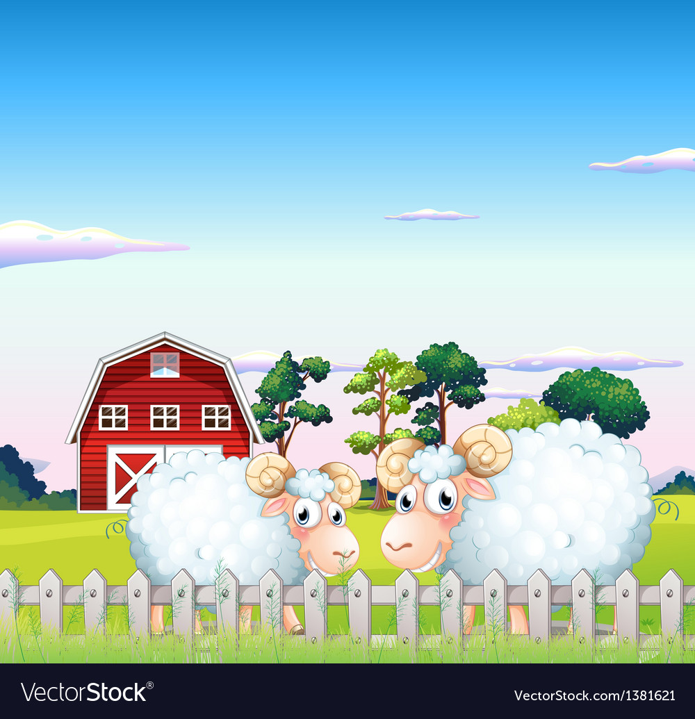 Two sheeps inside the fence with a barn at the vector