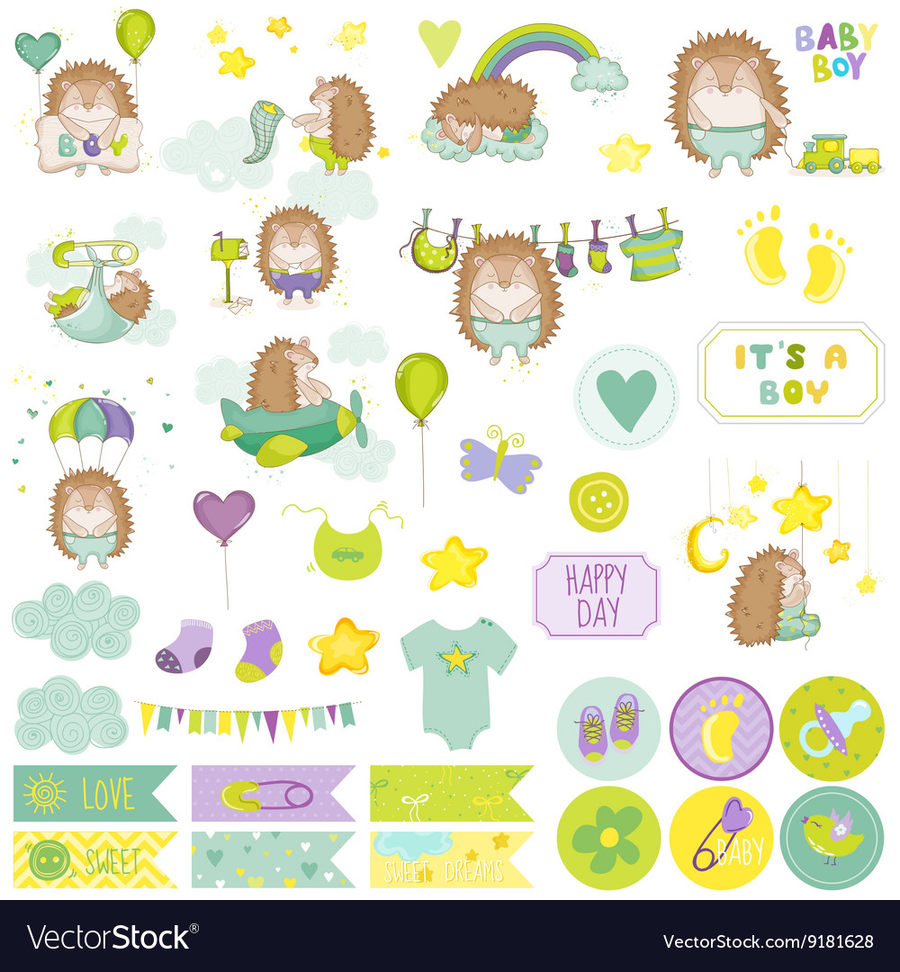 Baby boy hedgehog scrapbook set vector