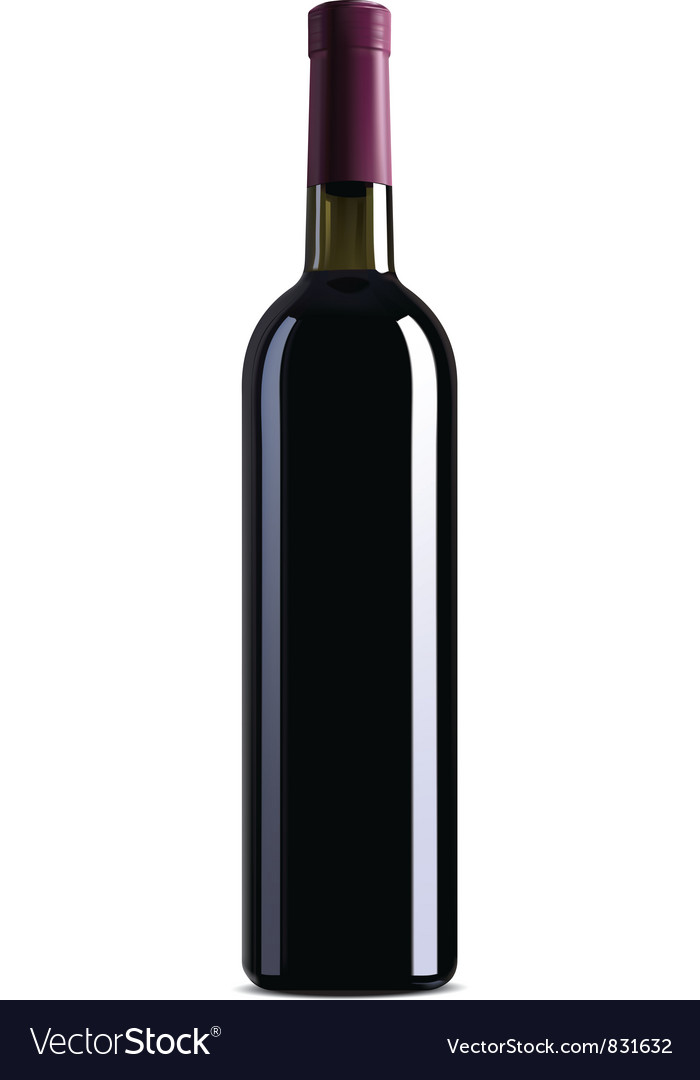 Bottle of wine vector