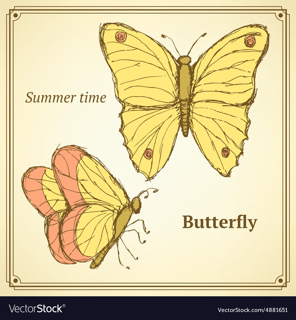 Sketch butterfly set in vintage style vector