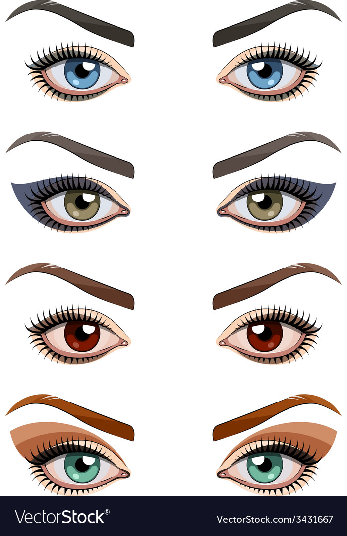 Womans eyes with makeup vector