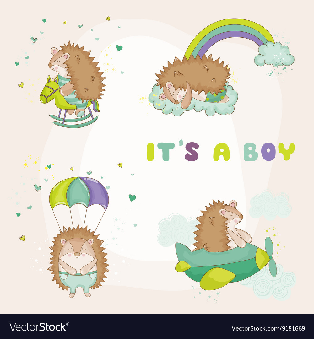 Baby hedgehog set  for baby shower vector