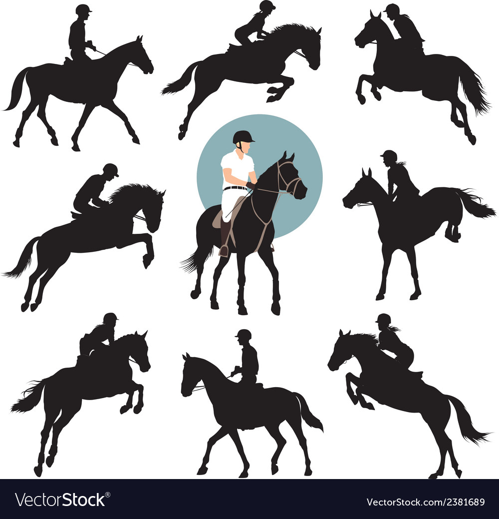 Equestrian sports vector