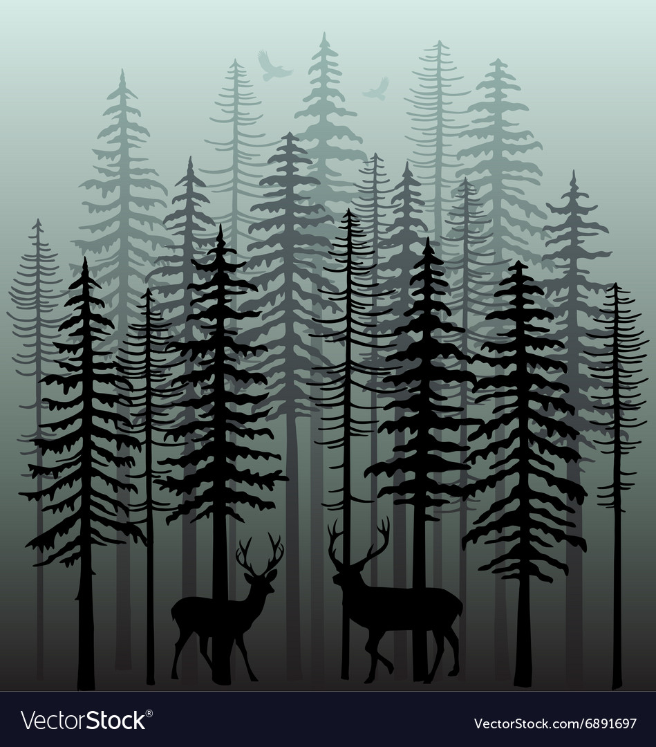 Winter forest with pine trees vector