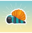 shell travel isolated icon vector image