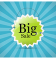 Retro Blue Green Big Sale Label Background vector image