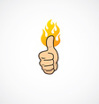 fire thumb up vector image