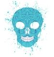 grunge skull on white background vector image