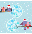 Couples of owls and birds winter vector image