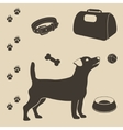 Dog care set of icons vector image