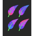 bright colored feathers set vector image