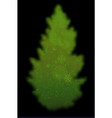 transparent green tree on a black background vector image