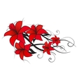 red lily vector image