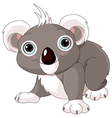Cute koala vector image